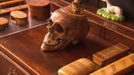 interior skull w/ frog on head and a gong on display in house Skull and gong on display in Agatha Christie house at Greenway on September 04 2013 in...