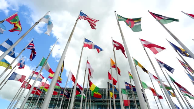 International flags in front of an business building