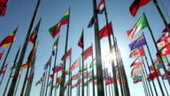 International flags with sunlight