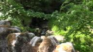 Ireland stone wall and stream