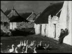 1934 Ireland