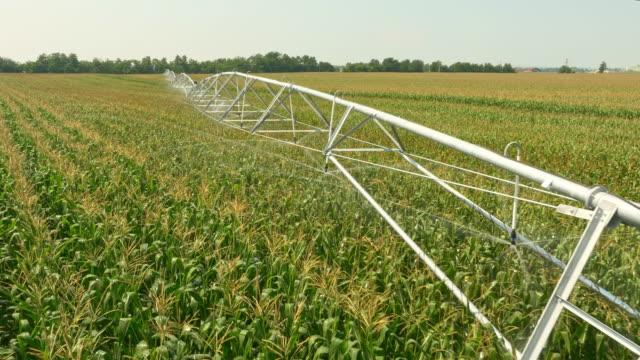 AERIAL Irrigating a field in a dry season