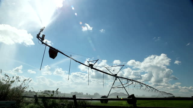 Irrigating The Crops