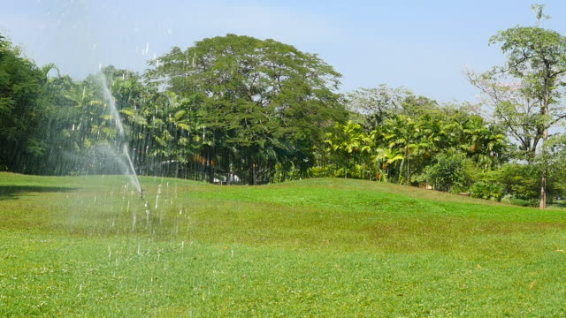 Irrigation Sprinkler at Green Grass Yard