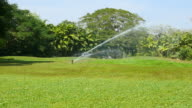 Irrigation Sprinkler at Green Grass Yard