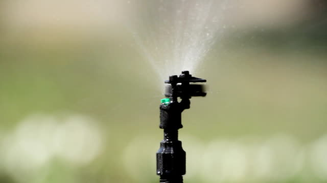 Irrigation system watering lawn.