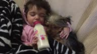 It doesn't get any more precious than this Check out these two snuggle up together on the couch as they enjoy the most adorable nap time ever...