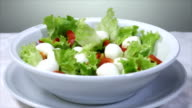 italian food - salad with mozzarella