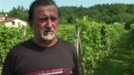 It's a long way from Bordeaux but vineyards in southern Poland are taking up the challenge of winemaking in a part of the world better known for its...