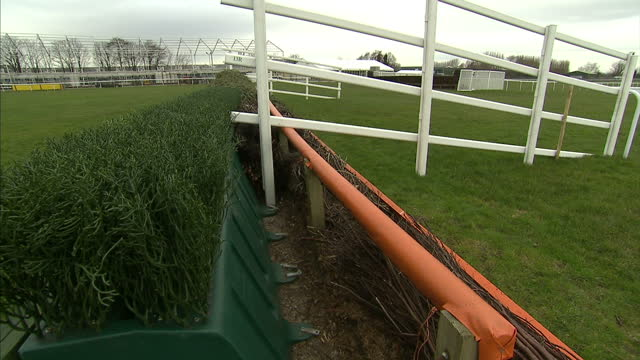 It's one of the highlights of the sporting calendar but the Grand National has been accused of animal cruelty after eight horses died over the last...