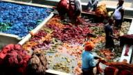 Jaipur India Asia Sari factory male dyed vats dye labor