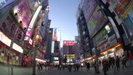 Japan, Tokyo, Neon signs cover buildings in the consumer electronics district of Akihabara