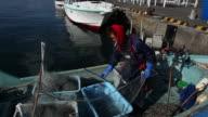 Japanese crab fisherman at work on a fishing boat