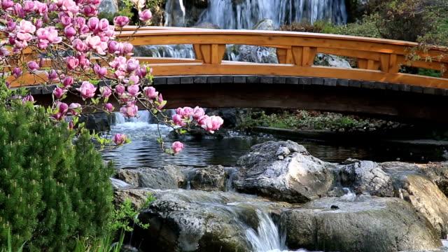 Giardino giapponese in primavera