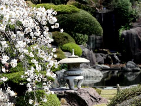 PAL: Japanese garden (video)