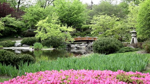 Japanese Garden with Bridge