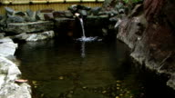 HD: Japanisches hot spring (video