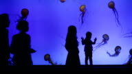 Jelly fish in big aquarium with silhouettes of people