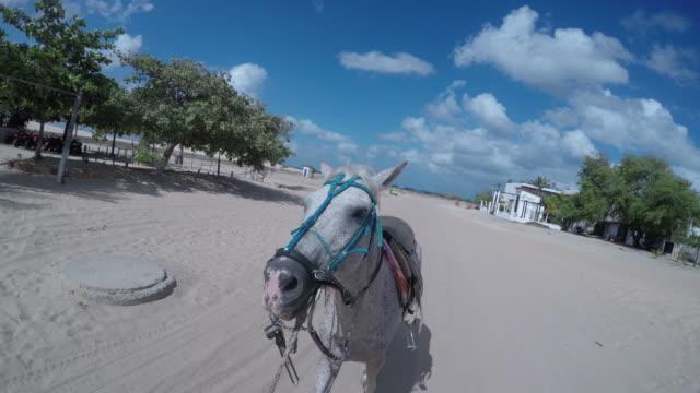 Jericoacoara Beach, Ceara, Brazil.