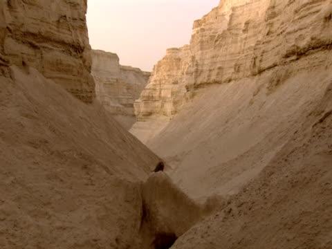 Jesus Christ walking through Kidron Valley