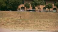 A jogger runs around the Circus Maximus below Palatine Hill.