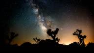 ZEITRAFFER: Joshua Tree unter Milchstraße
