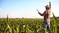 SLO MO Joyful farmer punching the air