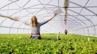 DS vreugdevolle tuinman ponsen van de lucht in de kas