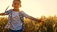 SLO MO Joyful little boy running in wheat field