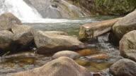 Jungle Rocky River
