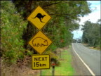 Kangaroo + koala + 'Next 15km' road signs on roadside / Blue Mountains, New South Wales, Australia