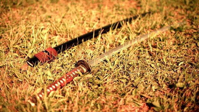 HD: Katana on a Meadow