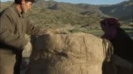 Kazakh man and woman wrap fabric around camel humps, Kalamaili Nature Reserve, Xinjiang, China