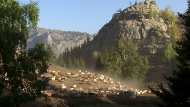 Kazakhs herd sheep in front of cliff, Kalamaili Nature Reserve, Xinjiang, China