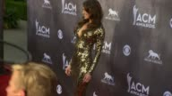 Kelleigh Bannen at the 49th Annual Academy of Country Music Awards Arrivals at MGM Grand Garden Arena on April 06 2014 in Las Vegas Nevada