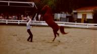 Kellogg Arabian Horse Center at California State Polytechnic University on March 01 1959 in Pomona California