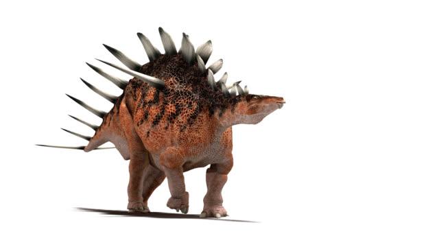 Kentrosaurus dinosaur walking