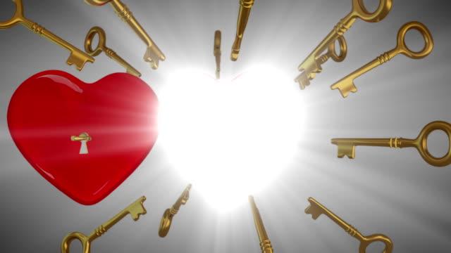 Der Schlüssel zu Ihrem Herzen, Konzept