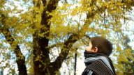 kid in autumn park