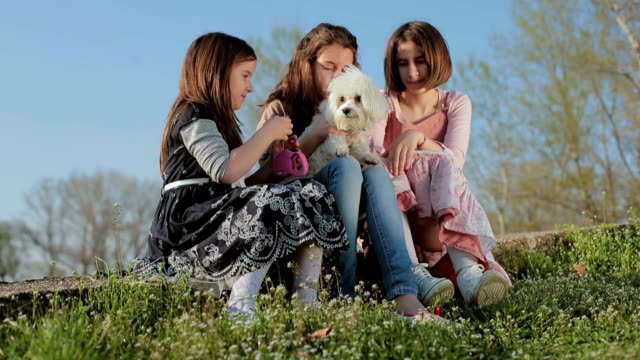 Kids play with puppy