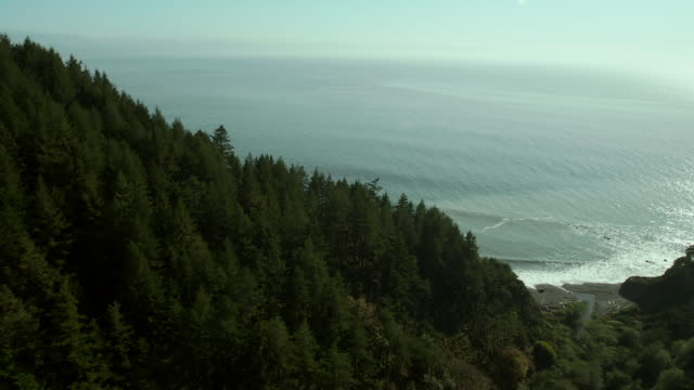 King Mountain Wilderness On California's Lost Coast