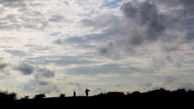 Kite flying silhouette