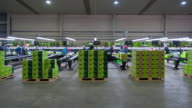 T/L WS Kiwi fruit pack house, kiwifruit being packed into boxes, Kati Kati, Bay of Plenty, New Zealand