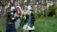 Knight Kampf