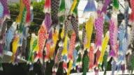 Koi-no-bori Display at Childrens Day
