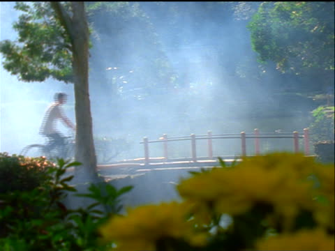 Korean man riding bicycle over footbridge in misty park / Valley of the Temples, Oahu