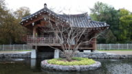 Korean temple with pond, early morning, dolly shot