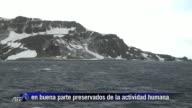 La Antartida es el continente mas aislado del planeta un imponente desierto de hielo rodeado de oceano donde los efectos de la intervencion humana...