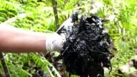 La justicia ecuatoriana condeno a la petrolera estadounidense Chevron a pagar 9511 millones de dolares por danos ambientales ocasionados por su...