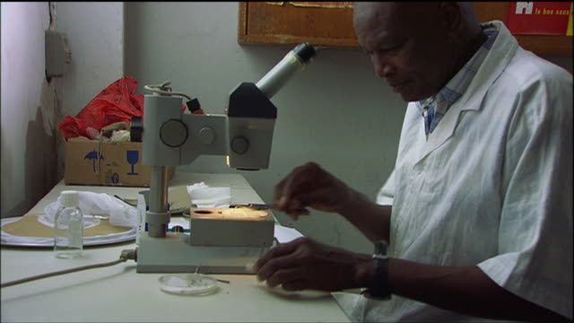 MS Lab technician testing and analyzing blood samples in a small laboratory / Senegal